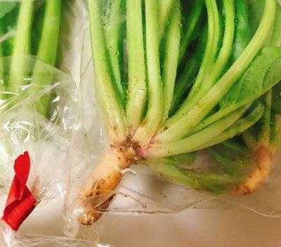 坂ノ途中お試しセットお野菜セットに入っていた新鮮なほうれん草の根っこ
