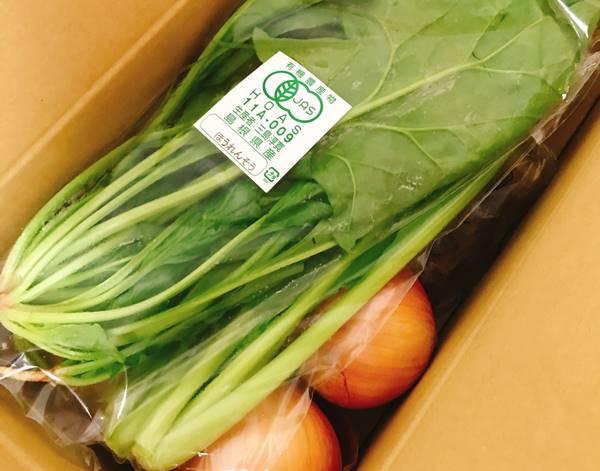 坂ノ途中お試し野菜セット宅配の箱を開けたところ