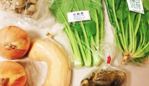 【頬落ち確実!】坂ノ途中お野菜お試しセットレビュー♪口コミ評判を画像つきで徹底解説するよ