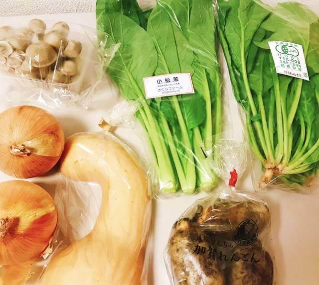 坂ノ途中の野菜宅配お試しセット 届いた野菜の一覧